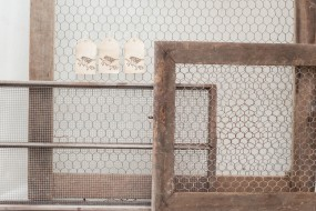 Chicken Wire Frames