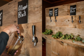 Mapine-Prop-House-Beer-Bar